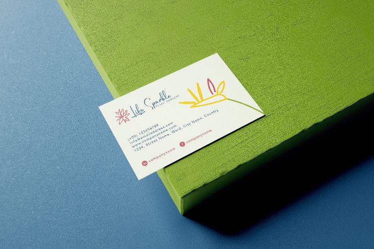 Plant Shop Brand Design & Illustrations
